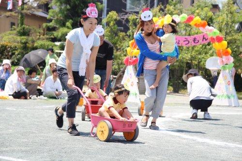 623a2c237895b3 5月25日(土)白須賀幼稚園で運動会が開催された。 たんぽぽ組は障害物競走「がんばれ!たんぽぽにんじゃ」に、ゆり組は親子競走「それゆけ!